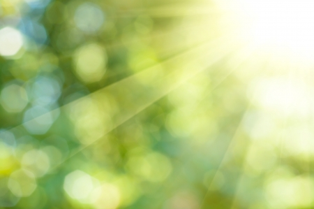 Natural outdoors bokeh background  in green and yellow tones with sun rays Stock Photo