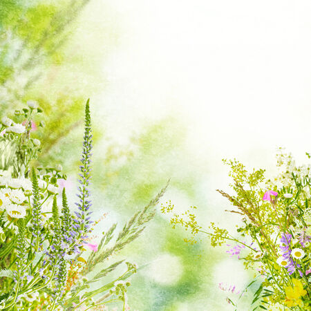 Natural floral background photo