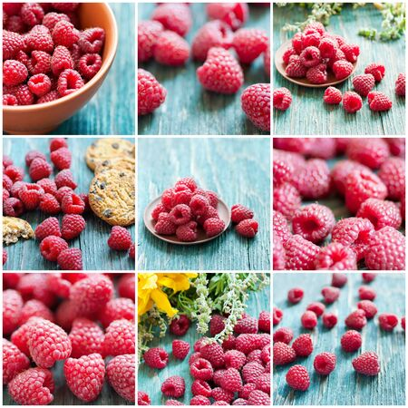 Collection from fresh raspberry images with green herbs photo