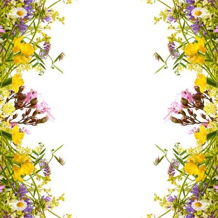 Floral voorjaar paasvakantie frame met copyspace Stockfoto