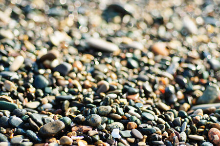 Sea pebble colorful vivid wet  background, macro, shallow depth of field photo
