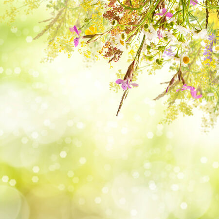 Floral spring easter holiday background with copyspace photo