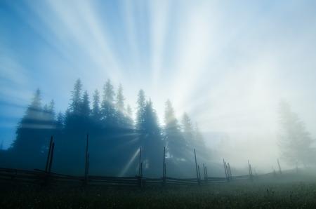 Mysterious light photo