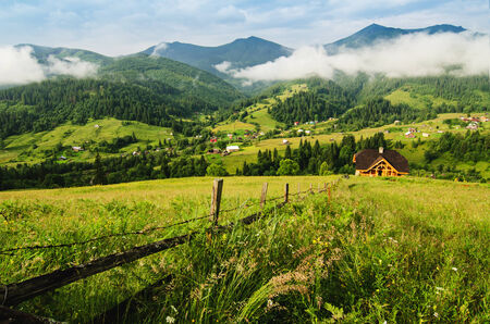 Carpathian mountain landscape with tree photo