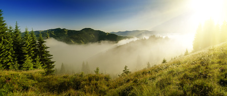 Foggy morning  landscape photo