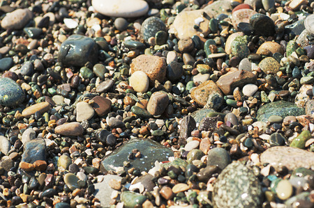 pebble: Sea pebble