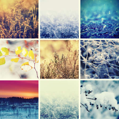 christmas backgrounds: Collection from different winter seasonal christmas backgrounds, suitable for web site design