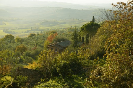 pienza: View from Pienza wall, gardens and olive trees of Tuscany, Italy - nature outdoor landscape background Stock Photo