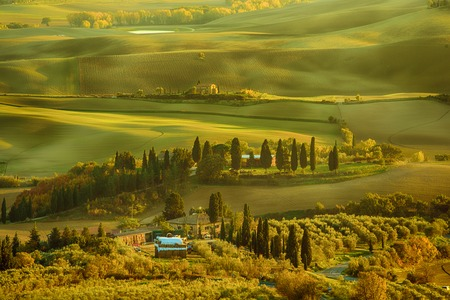 Wavy fields in Tuscany at sunset, Italy. Natural outdoor seasonal spring background.