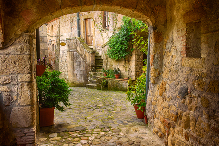 Stradina di tufo della città medievale di Sorano con l'arco, piante verdi e ciottoli, Viaggi Italia sfondo Archivio Fotografico