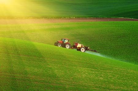 グリーン フィールド、自然農業の季節春背景に殺虫剤を散布する農業機械