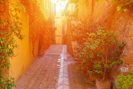 pienza: View of the ancient old european city. Street of Pienza, Italy. Sunny travel vintage background with copy space.