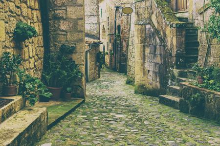 italy street: Narrow street of medieval tuff city Sorano with green plants and cobblestone, travel Italy vintage  background