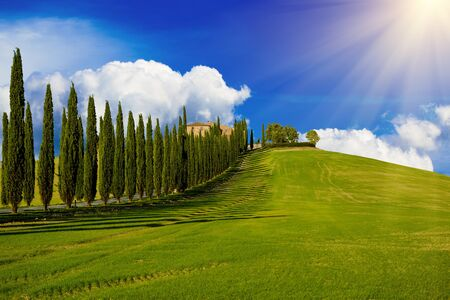 the tuscany: Villa in Tuscany with cypress road and blue sky with white clouds, idyllic seasonal nature landscape vintage hipster sunny background
