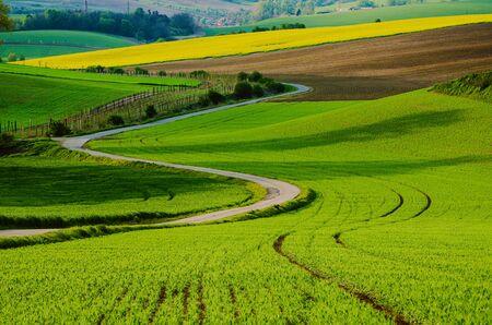 Paesaggio rurale con campi verdi, strada e onde, Moravia meridionale, Repubblica Ceca Archivio Fotografico
