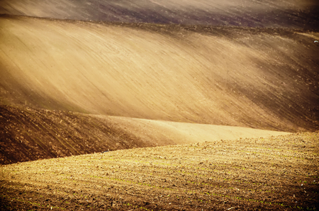 earthy: Earthy abstract natural sunny agricultural  background with hills and waves