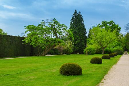 green park: Spring green park with pathway, natural outdoor seasonal background
