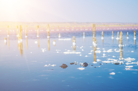 summer nature: Beautiful salt lake with blue and pink water,  white clouds  and wooden posts, natural landscape amazing background