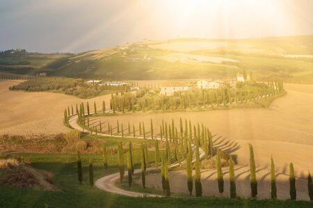 Villa in Tuscany with cypress road, idyllic seasonal nature sunny landscape vintage background Imagens