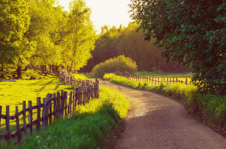 Rural Sweden summer sunny landscape with road, green trees and wooden fence. Adventure scandinavian hipster concept 版權商用圖片 - 61880948