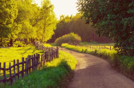 Suecia rural verano paisaje soleado con carretera, árboles verdes y valla de madera. Aventura concepto escandinavo hipster