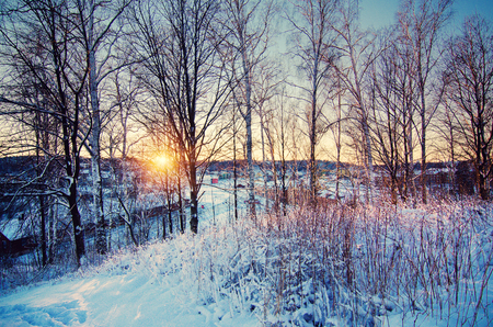 Winter sunny sunset landscape with trees and wooden bench on the hill above city in Sweden, north scandinavian seasonal hipster background. Stock Photo