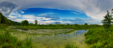 美しい夏の風景 写真素材