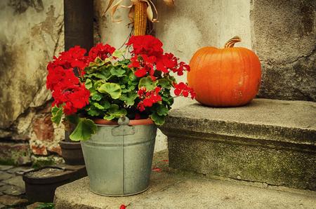 Halloween holiday decoration Stock Photo