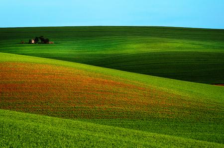 Rural spring landscape Stock Photo