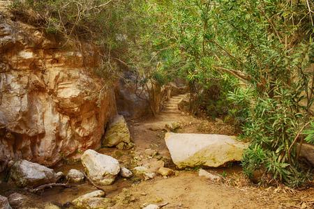 The Avakas canyon Фото со стока