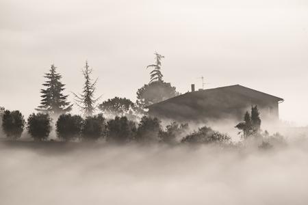 Drowned in the fog Фото со стока