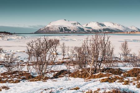 Winter Norway LANDSCAPE Фото со стока