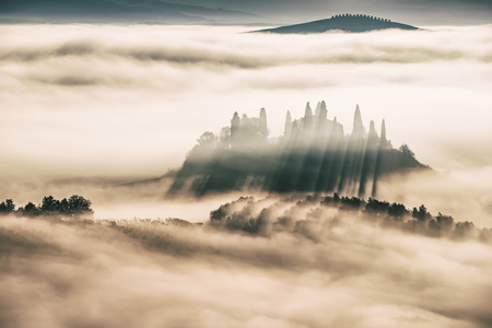 Drowned in the fog Stockfoto