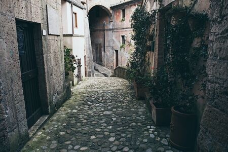 Narrow street of medieval ancient tuff city Sorano with green plants and cobblestone, travel Italy background