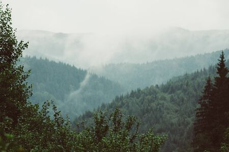 Foggy morning summer mountain landscape, amazing hipster background with trees frame. Vintage toning.