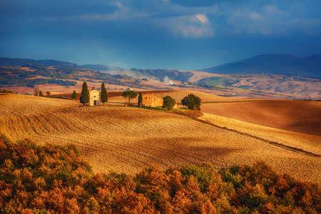 Wavy fields in Tuscany Stockfoto