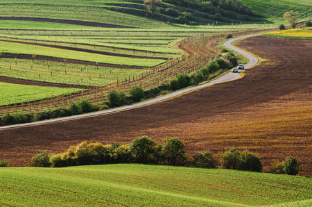 Rural landscape with road Banque d'images