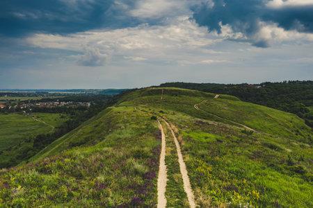 Rural summer landscape