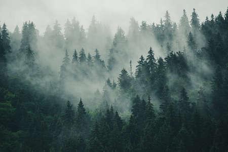 Misty mountain landscape Archivio Fotografico