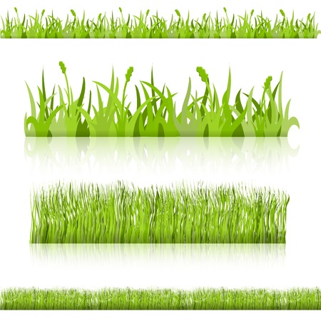 Set grass. samples for different uses. Vector image.