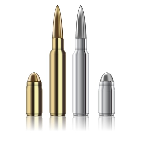 excellent Vector Rifle and pistol bullets isolated on white Vector