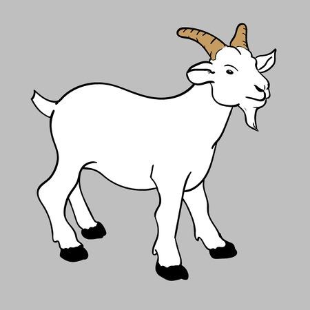 illustration of little white funny goat vector Vector