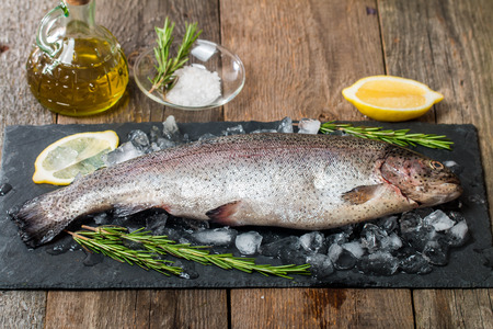 sea animals: fresh trout with rosemary, lemon and ice on slate on wooden  table
