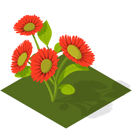 tulips in green grass: Isometric Tile Flowers red gerbera with shadows Illustration