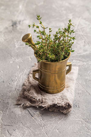 galley: Fresh green thyme in old metal mortar on gray background