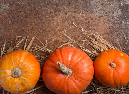 Autumn Pumpkin Thanksgiving Background - orange pumpkins over rusty metal background, top view