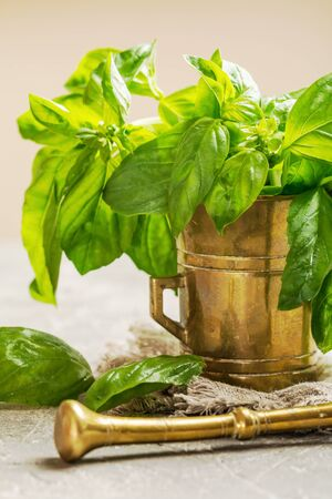 Fresh green basil in old metal mortar on gray background Stock Photo