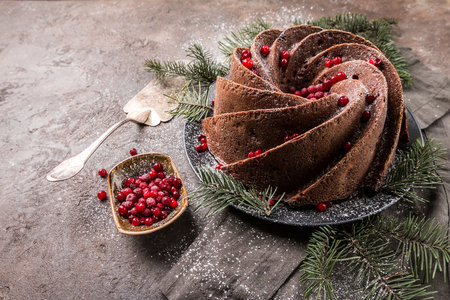 Gingerbread Bundt Cake Stock Photo