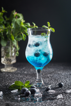 Blueberry cocktail with ice and mint Foto de archivo
