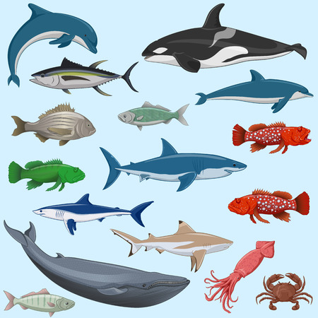 vector set of sea animals